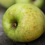 りんご(サンダンス) / Sundance apple