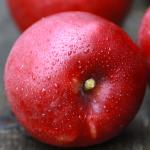 りんご(ワインサップ) / Winesap apple