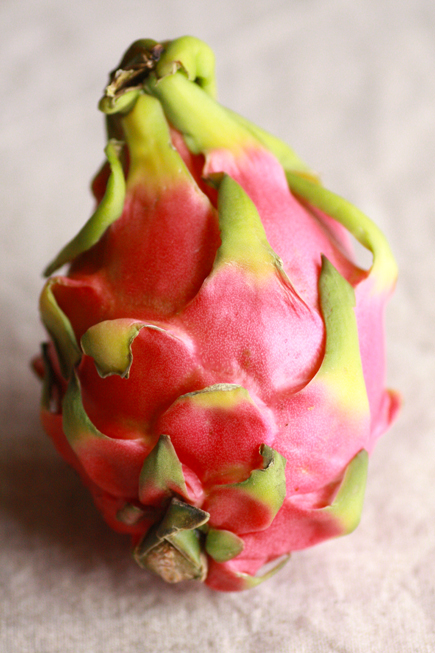 dragonfruit0211no4-1