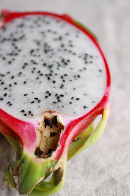 dragonfruit0211no5