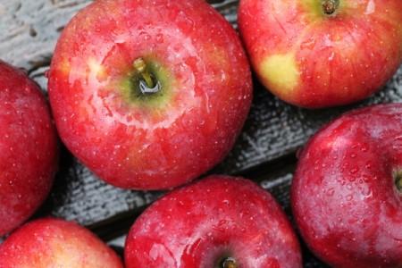 フランス生まれ!フロリーナりんご(Florina apple)まとめ