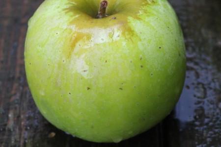 ベンジャミンフランクリンに愛されたりんご!ニュートン・ピピン(Newton Pippin Apple)まとめ