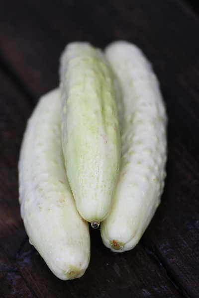 whitecucumber0719no3