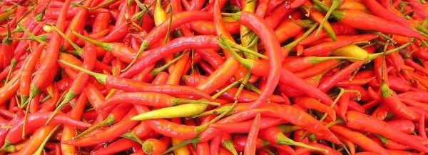 chilli-pepper-449_960_720