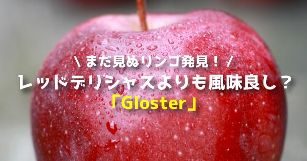 glosterrr