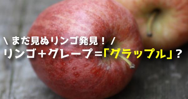 【見た目は普通のリンゴ!でも味はブドウ!?】 驚きの品種「グラップル(Grapple)」まとめ