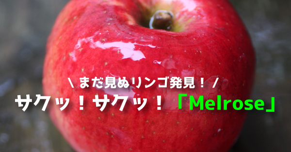 melrose111
