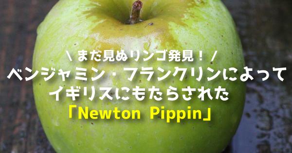 newton11