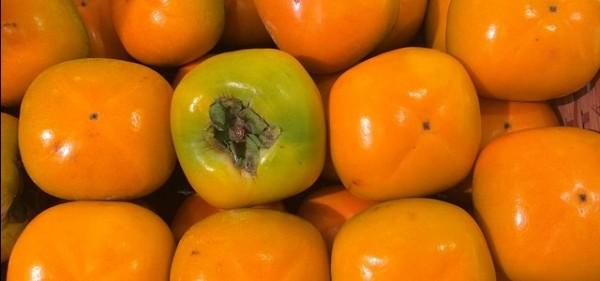 persimmon-1663186_640