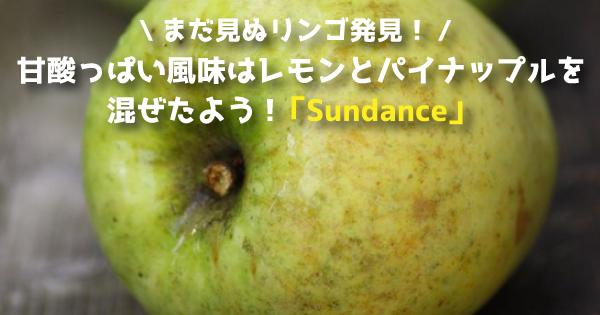 sundace