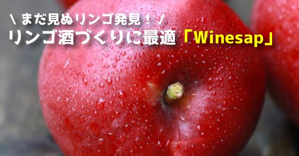 winesap11