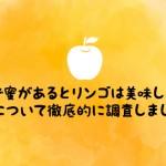 りんごの蜜を野菜ソムリエが徹底解剖!蜜が入りやすい品種は?選び方は?保存方法は?etc.