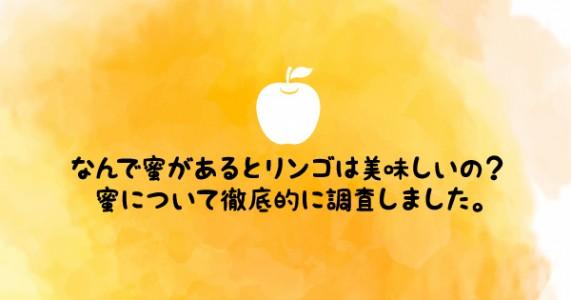 ほんとは甘くない?りんごの蜜について野菜ソムリエが徹底に調べてみた