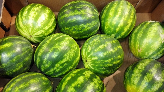 watermelon-1267450_640