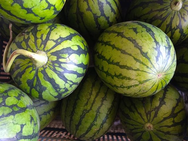 watermelon-1580923_640