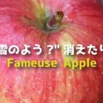 """まるで雪のよう?""""消えたりんご""""ファムーズ(Fameuse Apple・紅絞)まとめ"""