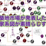 これでブドウ博士!築地市場が発表した「葡萄の家系図」で気になった品種3つ!