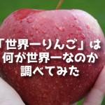 巨大りんご「世界一(World #1)」は何が世界で一番なのか調べてみた