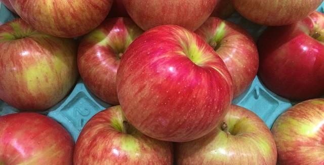 apple-1615022_640