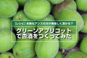 greenapricot-recipe