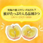 蜜がたっぷりのリンゴを食べたい人にオススメの品種3つ(こみつ、はるか、こうこう)