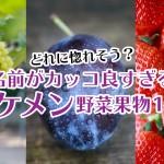 麗紅にカクテルフルーツetc!名前にインパクトがあるイケメン野菜・果物10選
