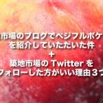 【カナダの桃事情】築地市場さまのブログで野菜ソムリエHiroのベジフルポケットを紹介していただきました。