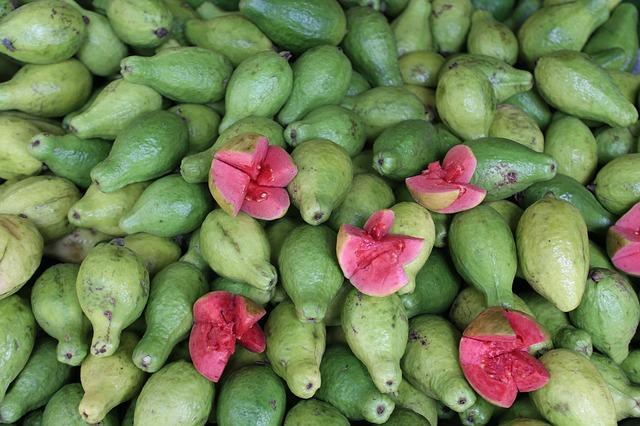 guava-2880259_640