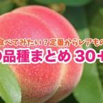 【保存版】定番からレアものまで桃の品種まとめ30+1!清水白桃・おどろき・黄貴妃 etc.