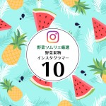 醜い青果は美しい?!思わずフォローしたくなる野菜果物Instagramアカウント10