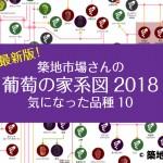 即保存!築地市場さんの葡萄の家系図2018年版登場!食べてみたい品種10