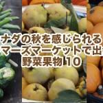 秋真っただ中!バンクーバーのファーマーズマーケットで出会った野菜果物10