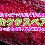 【まとめ】美しすぎる果物カクタスペア(ウチワサボテン)を食べてみた感想+歴史・栄養etc!