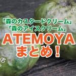 【選び方や栄養は?】森のアイスクリーム「アテモヤ」まとめ!実際に食べた感想!
