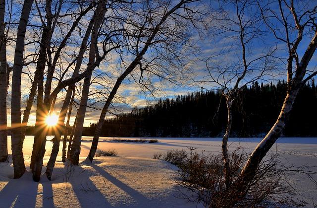 winter-landscape-2192519_640