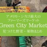 アメリカ・シカゴ最大のファーマーズマーケット Green City Market で出会った野菜果物まとめ