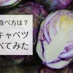 味は?食べ方は?レア野菜「紫芽キャベツ」を食べてみた