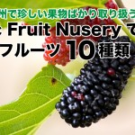 カナダBC州の珍しい果物ばかり扱う種苗場 Exotic Fruit Nusery で見たいフルーツ10種