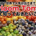 家宝種?エアルームトマト(Heirloom Tomato)について知っておきたい5つのこと