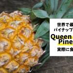 世界で最も美味な品種?クイーン・ビクトリア・パイナップル(Queen Victoria Pineapple)を食べてみた