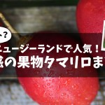 トマトみたいな果物?ニュージーランドで人気のタマリロ(Tamarillo)まとめ