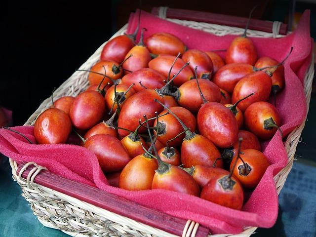 tree-tomato-1849374_640