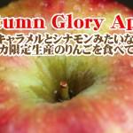 キャラメルとシナモンの香りがするリンゴ? Autumn Glory Apple が今熱い件