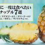 死ぬまでに一度は食べたいパイナップル7選(ゴールドバレル / タダオゴールド / サマーゴールド / ハニークリーム / ゆがふ / サンドルチェetc)