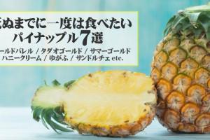 pineapple7