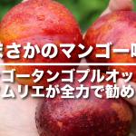 スモモとアンズの交配種マンゴータンゴプルオットを野菜ソムリエが全力で勧める理由