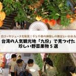 白ゴーヤジュースも発見!台湾の人気観光地「九份」で見つけた珍しい野菜果物5選