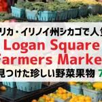 シカゴのファーマーズマーケットLogan Square Farmers Marketで出会った野菜果物7