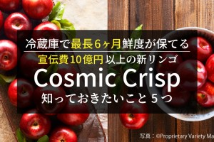 cosmicccc
