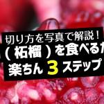 【切り方解説】ザクロ(柘榴)を食べるための多分一番簡単な方法を3ステップで紹介